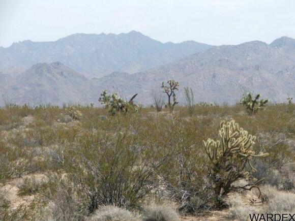 3054/58 Dateland Rd., Yucca, AZ 86438 Photo 6