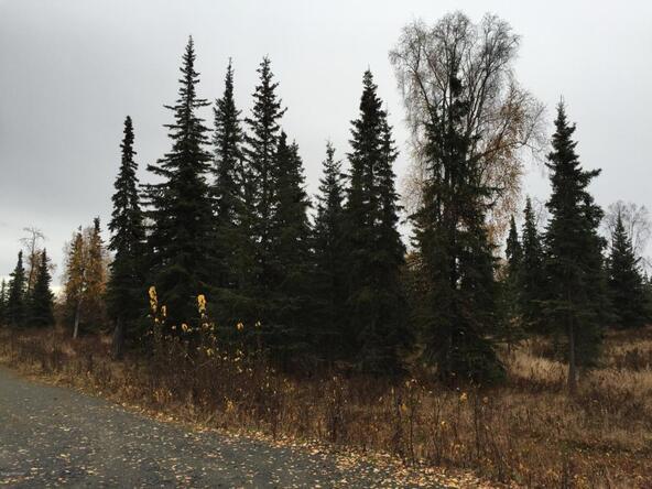 63760 Tailwind Rd., Ninilchik, AK 99639 Photo 25