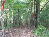 Home for sale: Lot 64 Grindstone Ln., Millers Creek, NC 28651