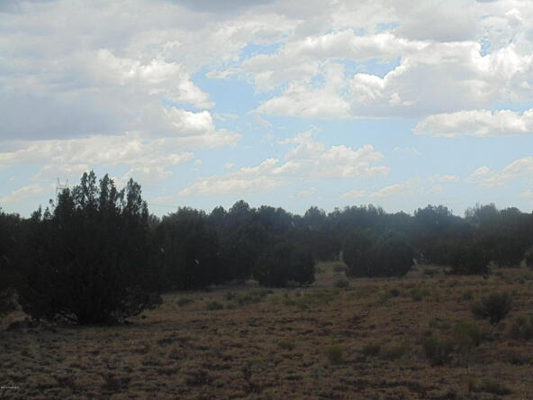 1368 Greenhorn Rd., Seligman, AZ 86337 Photo 7