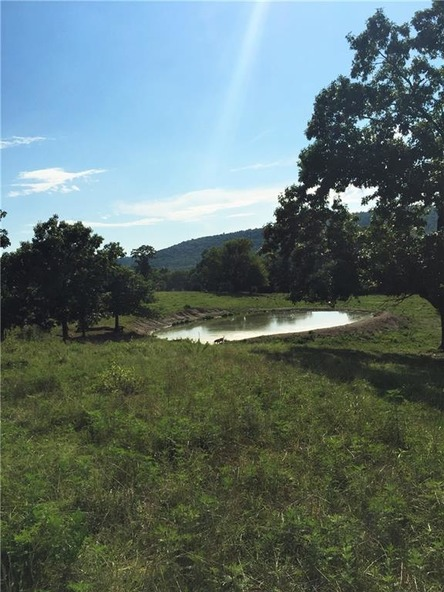 20745 S. Hwy. 103, Green Forest, AR 72638 Photo 16