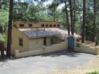Home for sale: 101 Pine Cone Ln., Alto, NM 88312