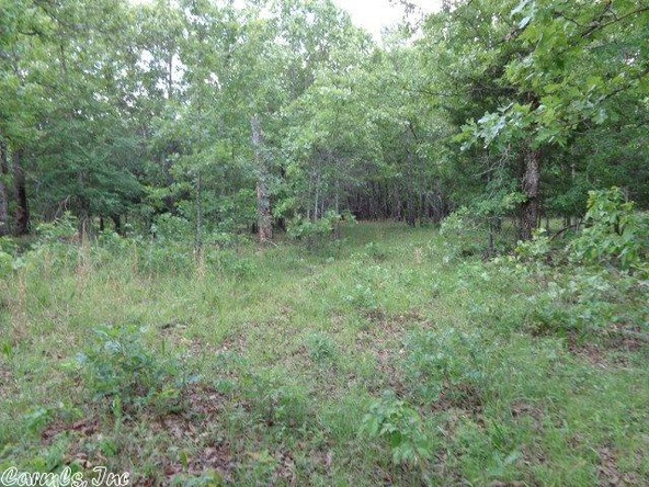 2606 Eagle Nest Rd., Ash Flat, AR 72513 Photo 23