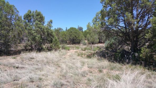 1212 Elliott Lot B Ln., Show Low, AZ 85901 Photo 1