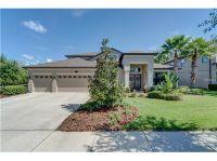 Home for sale: 15635 Hampton Village Dr., Tampa, FL 33618