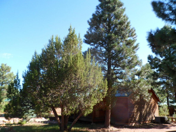 2649 Lodge Loop, Overgaard, AZ 85933 Photo 31