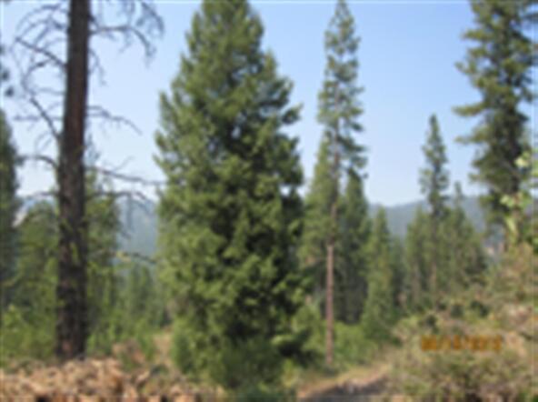 Lot 1 Elk Run Sub, Idaho City, ID 83631 Photo 3