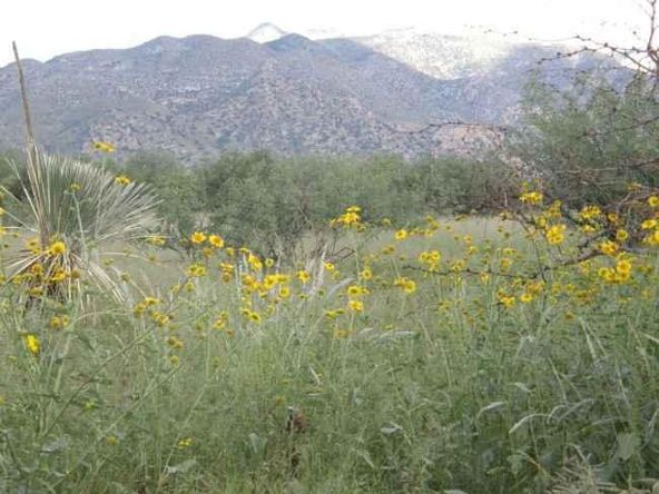 697092 E. Horse Ranch Rd., Saint David, AZ 85630 Photo 20