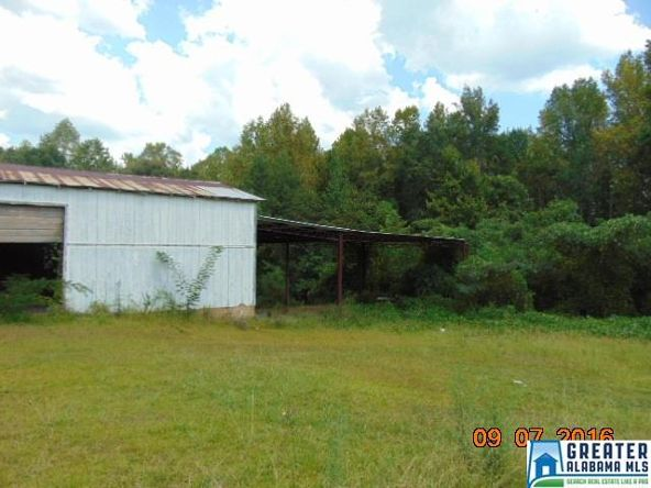 3701 Co Rd. 32, Clanton, AL 35045 Photo 6