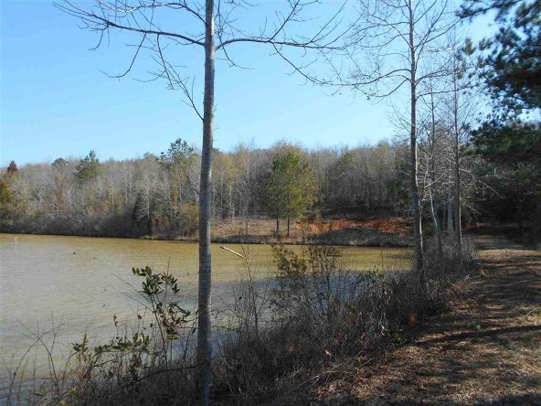 16.9 Acres Private Rd. 1363, Ariton, AL 36311 Photo 24