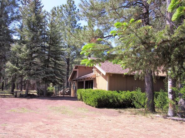 4651 Buck Springs Rd., Pinetop, AZ 85935 Photo 36
