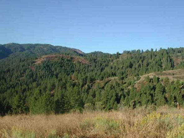 Lot 110 Gold Fork Ridge Rd., Boise, ID 83716 Photo 4