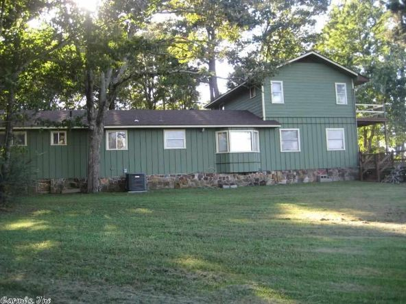 257 Polk 89, Mena, AR 71953 Photo 16