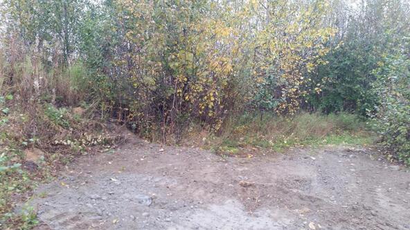 2677 E. Beech Way, Wasilla, AK 99654 Photo 18