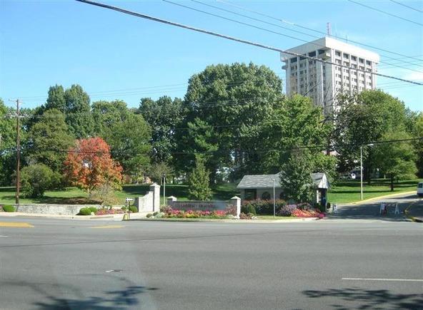 220 Cedar, Lexington, KY 40508 Photo 16