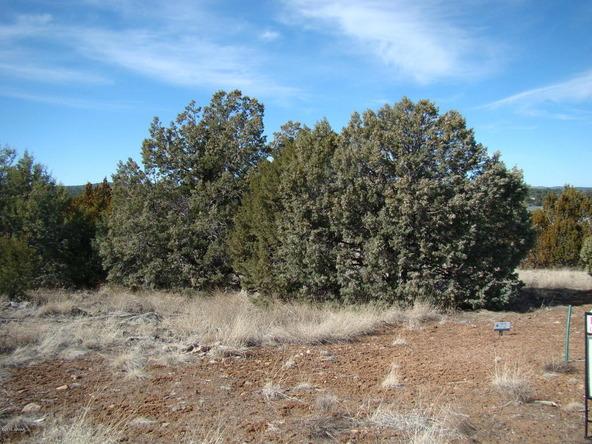 660 S. Rockridge Dr., Show Low, AZ 85901 Photo 4