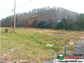 790 Greenhill Blvd. N.W., Fort Payne, AL 35967 Photo 4
