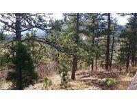 Home for sale: 0 Star View Cir., Palmer Lake, CO 80133
