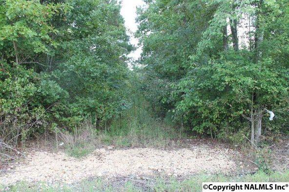 310 County Rd. 590, Fort Payne, AL 35968 Photo 1