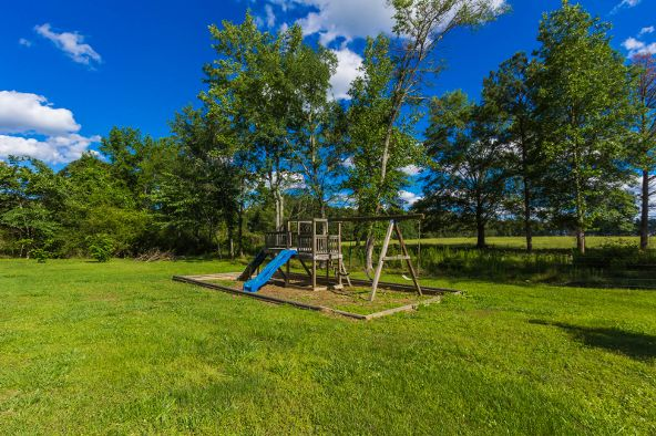 2388 County Rd. 324, Moulton, AL 35650 Photo 9