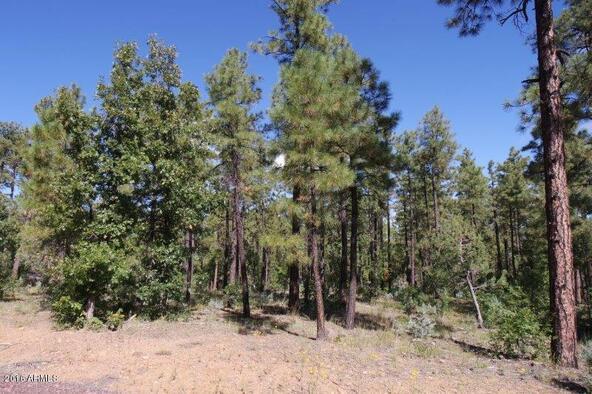2850 W. Richardson Ln., Lakeside, AZ 85929 Photo 8