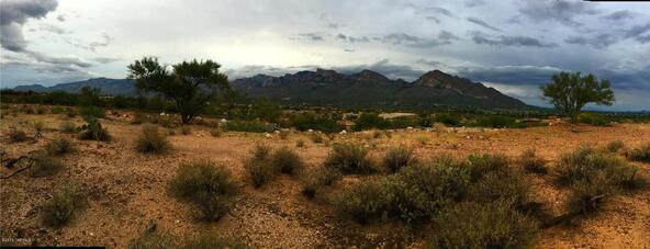 11115 N. Desert Whisper, Tucson, AZ 85737 Photo 4