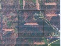Home for sale: Tbd Farm Rd. 1140, Aurora, MO 65605