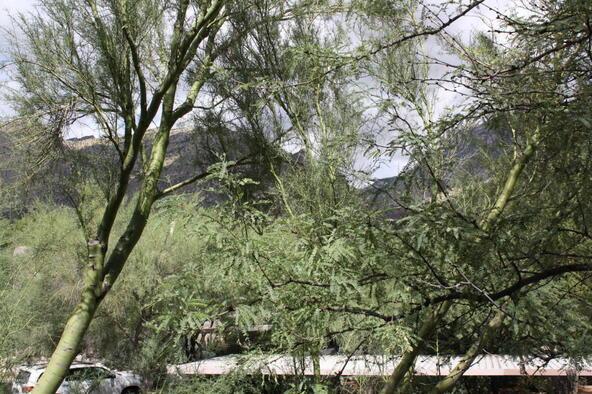 6655 N. Canyon Crest, Tucson, AZ 85750 Photo 23
