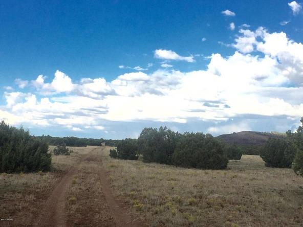 850 Cinder Pit Rd., Show Low, AZ 85901 Photo 51