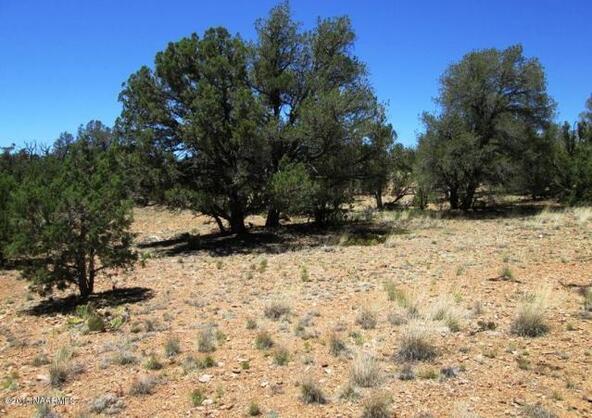 87 Stockmans Rd., Ash Fork, AZ 86320 Photo 4