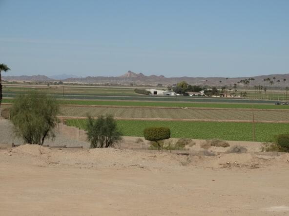 8125 E. Adobe Ridge Rd., Yuma, AZ 85365 Photo 4