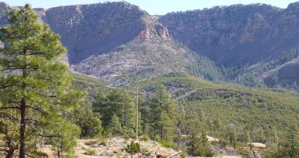 220 W. Zane Grey Cir., Christopher Creek, AZ 85541 Photo 45
