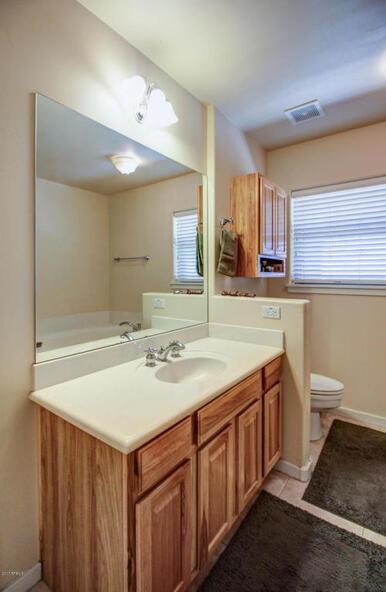 26214 N. 102nd Avenue, Peoria, AZ 85383 Photo 50