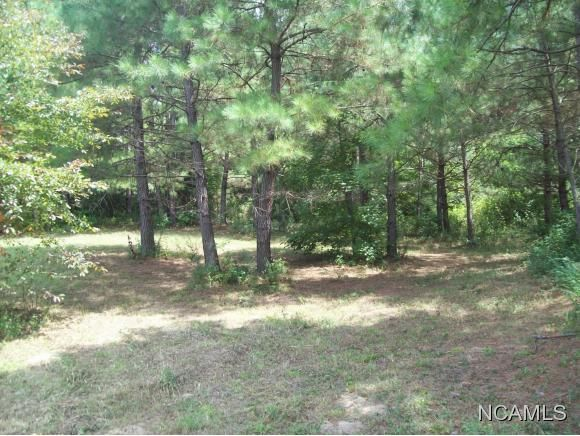 477 Co Rd. 1731, Holly Pond, AL 35083 Photo 3