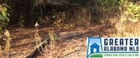 Home for sale: 710 Langford Ln., Morris, AL 35116