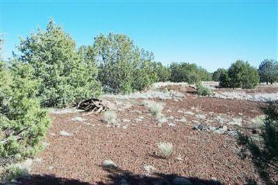 1227 W. Yukon Dr., Ash Fork, AZ 86320 Photo 13