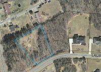 Home for sale: 151 Laurel Ridge Ln., Linwood, NC 27299