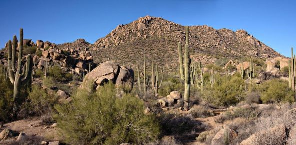 14144 E. Westland Rd., Scottsdale, AZ 85262 Photo 73