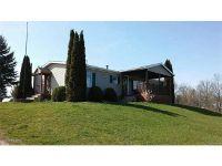 Home for sale: 1945 22 Mile Rd., Homer, MI 49245