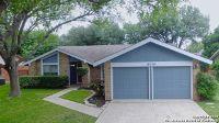 Home for sale: 14119 Big Tree Dr., San Antonio, TX 78247