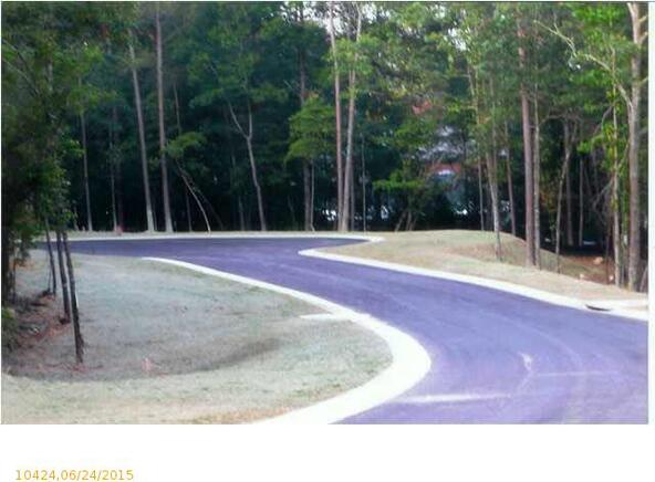 767 Lakeview Crest Dr., Pell City, AL 35128 Photo 4
