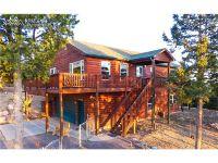 Home for sale: 487 Potlatch Trail, Woodland Park, CO 80863