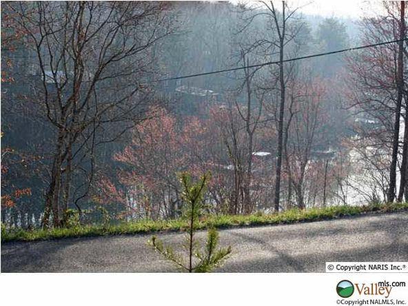 1108 County Rd. 106, Mentone, AL 35984 Photo 4