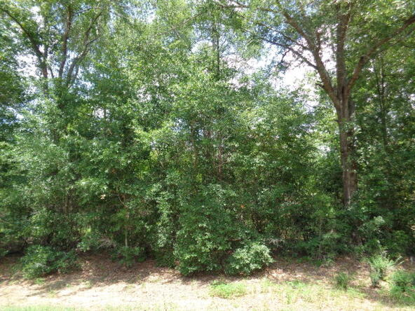 7.1+-Ac Lucy Grade Rd., Ashford, AL 36312 Photo 10