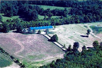 3957 Real Quiet Ln., Lexington, KY 40509 Photo 23