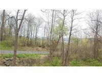 Home for sale: 6200 Bills Rd., South Bristol, NY 14512