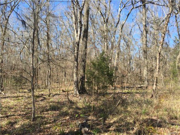 17 Red Eagle Rd., Lowndesboro, AL 36752 Photo 7