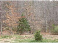 Home for sale: Lot 11 Poplar Ridge Dr., Gloucester, VA 23061