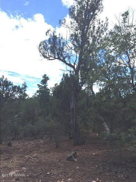800 E. Pine Oaks Dr., Show Low, AZ 85901 Photo 10