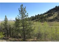 Home for sale: 2667 Ranch Rd., Hartsel, CO 80449